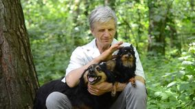 Gray-haired man petting his dogs. Gray-haired man petting his two dogs sitting in the forest, HD 1080 stock video footage