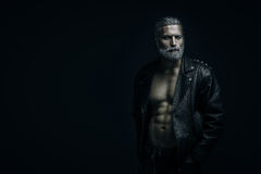Gray haired man portrait Stock Images