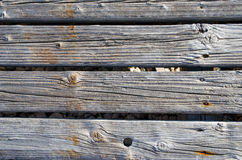 Gray hardwood planks texture or background. Stock Image