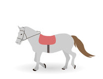 Gray horse on White Background. Vector Illustration. Stock Photo