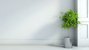 Gray interior in classic style with plant. 3D illustration Royalty Free Stock Photography