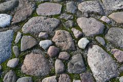 Gray Irregular Granite Rock Paving lizenzfreie stockfotografie
