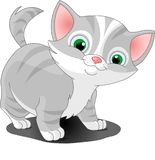 Gray_kitten. Little gray cat standing looking Royalty Free Stock Image