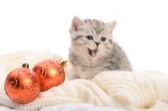 Gray kitten with christmas balls Royalty Free Stock Photos
