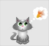 Gray kitten Stock Photography