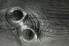 Gray knotty wood texture grey Stock Photography
