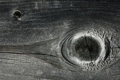 Gray knotty wood texture grey Stock Photo