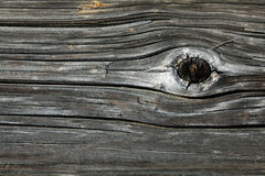 Gray knotty wood texture grey Royalty Free Stock Photo