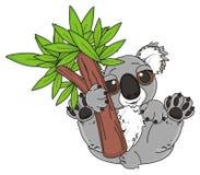 Gray koala with tree Stock Photo