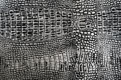 Gray leather snake leather stock image