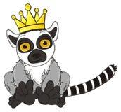 Gray lemur king Stock Image