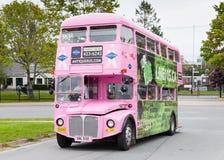 Gray Line Bus Royalty Free Stock Photo