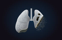 The gray lung transform into ashes. This illustration about effect of smoking and cancer Stock Photography
