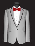 Gray man suit Royalty Free Stock Photography