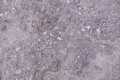 Marble granite with white spots background. texture. Gray marble granite with white spots background. texture stock image