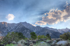 Gray Mountain area-Inyo National Forest-California. Royalty Free Stock Photography