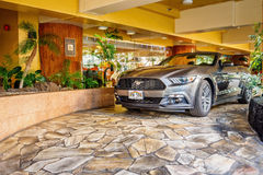 Gray Mustang sportscar Stock Image