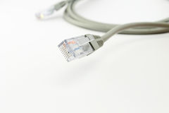 Gray network cable Royalty Free Stock Photography