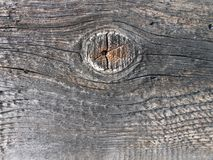 Gray old boards with oval texture. Gray old boards with oval wooden texture stock photography