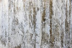 Gray old grunge textured wooden background Stock Photos