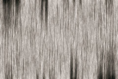 Gray Old wood texture. Stock Photography