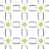 Gray ornament net green flowers and white crosses vector illustration
