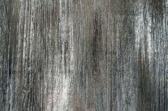 Gray Painted Wood Texture Background Royalty Free Stock Images