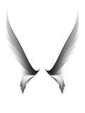 Gray pair wings stock illustration