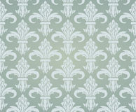 Gray pattern with damask. Stock Image