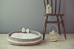 Gray pet mattress in the room Royalty Free Stock Image