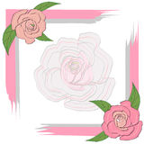 Gray pink frame with roses for a greeting card, invitation, on a semi-transparent rose background, wedding. Gray pink frame with roses for a greeting card Stock Photo