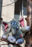 Gray plush elephant Stock Photos