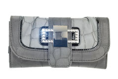 Gray purse. Grey very fashional gray purse with sparkle isolated on the white background royalty free stock photos