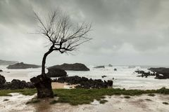 Gray and rainy day in autumn and storm in the sea. royalty free stock photography