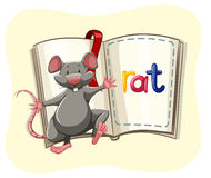 Gray rat and a book Stock Photography