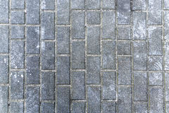 Gray rectangular paving city Stock Images
