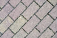 Gray rectangular paving slabs Royalty Free Stock Photos