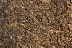 A gray red porous volcanic stone. natural rough surface texture. Gray red porous volcanic stone. natural rough surface texture stock images