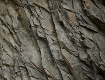 Gray rock texture. Abstract background of stone Stock Images