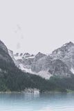 Gray Rocky Mountain Beside Green Trees Near Body of Water during Daytime Stock Photography