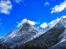 Gray Rocky Mountain Beside Pine Tree Under Blue Cloudy Sky during Day Time Stock Photography
