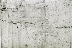 Gray rough plaster Stock Image