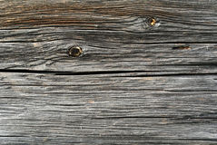 Gray sawed wood log background Royalty Free Stock Images