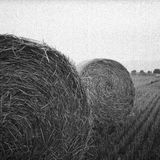 Gray Scale Photo of Haystack on Field Stock Photo