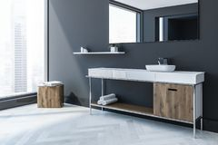 Gray Scandinavian-de hoek van de stijlbadkamers, gootsteen Royalty-vrije Illustratie