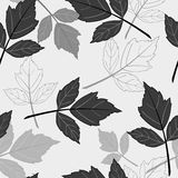 Gray seamless pattern with leaves Royalty Free Stock Images