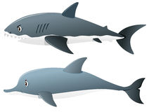 Gray shark and dolphin. Illustration Stock Images
