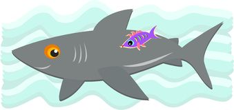 Gray Shark and Purple Fish Royalty Free Stock Image