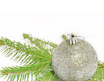 Gray shiny christmas ball on green pine tree on white background Stock Images