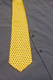 Gray Shirt And Yellow Tie Stock Photography
